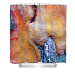 Shower Curtain featuring the digital art Sacred by Richard Laeton
