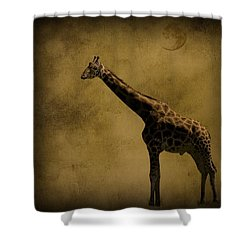 Safari Moon Shower Curtain