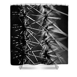 Saguaro Nights Shower Curtain by Vicki Pelham