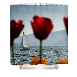 Sailing Boat And Tulip Shower Curtain by Mats Silvan