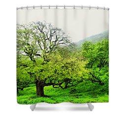 Salalah Green Shower Curtain
