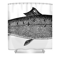Salmon Shower Curtain by Granger