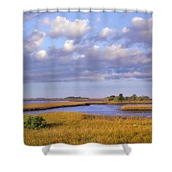 Saltwater Marshes At Cedar Key Florida Shower Curtain by Tim Fitzharris