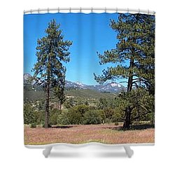 San Bernardino Forest Vista Shower Curtain