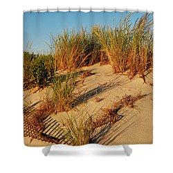 Sand Dune II - Jersey Shore Shower Curtain