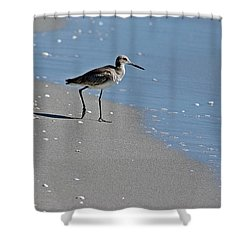 Sandpiper 2 Shower Curtain by Joe Faherty