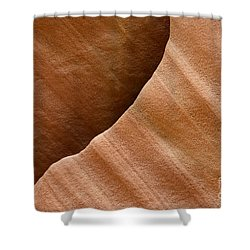 Sandstone Detail Shower Curtain by Bob Christopher