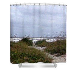 Sandy Path To The Beach Shower Curtain by Patricia Taylor