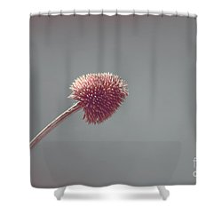 Sans Nom - S03 Shower Curtain by Variance Collections