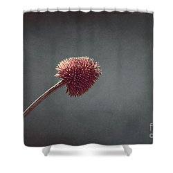 Sans Nom - S03at01b Shower Curtain by Variance Collections