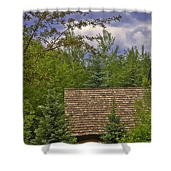 Scene Through The Trees - Vail Shower Curtain by Madeline Ellis