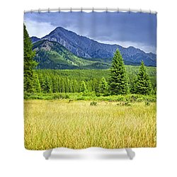 Scenic View In Canadian Rockies Shower Curtain by Elena Elisseeva