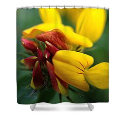 Shower Curtain featuring the photograph Scotch Broom by Chriss Pagani
