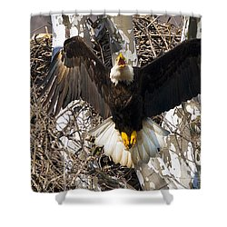 Shower Curtain featuring the photograph Screaming Eagle  by Randall Branham