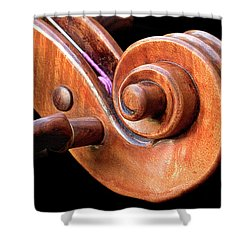 Shower Curtain featuring the photograph Scroll Detail by Endre Balogh