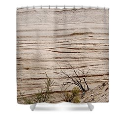 Sculpted By Nature Shower Curtain by Vicki Pelham