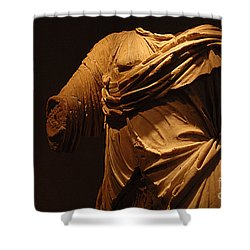 Sculpture Olympia 1 Shower Curtain by Bob Christopher
