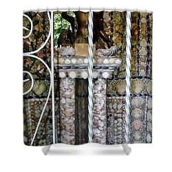Shower Curtain featuring the photograph Sea Shells  by Katy Mei