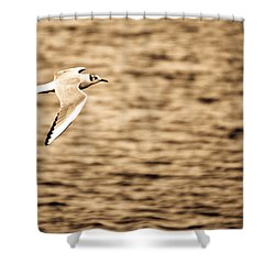 Seagull Antiqued Shower Curtain