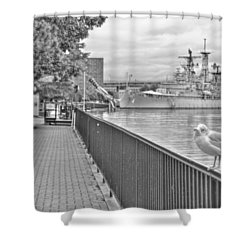 Shower Curtain featuring the photograph Seagull At The Naval And Military Park by Michael Frank Jr