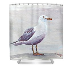 Shower Curtain featuring the painting Seagull by Chriss Pagani