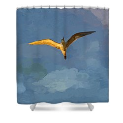 Seagull Sunrise Shower Curtain by Miguel Pumarejo