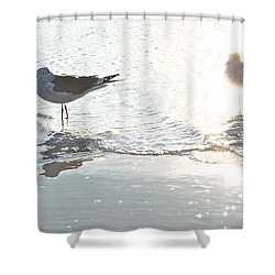 Seagulls In A Shimmer Shower Curtain by Olivia Novak