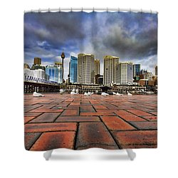 Seagull's Perspective Shower Curtain by Douglas Barnard
