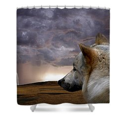 Searching For Home Shower Curtain by Bill Stephens
