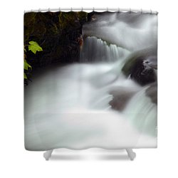 Seasons Rush By Shower Curtain by Mike  Dawson