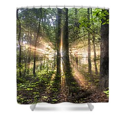 Second Coming Shower Curtain by Debra and Dave Vanderlaan