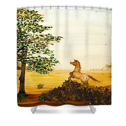 See Spot Run Shower Curtain