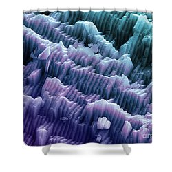 Sem Of A Blue Mussel Shell Shower Curtain by Ted Kinsman