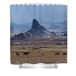 Sentinels Shower Curtain by Dorrene BrownButterfield