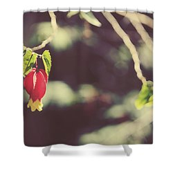 Separate Lives Shower Curtain by Laurie Search