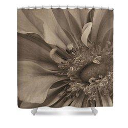 Sepia Floral Shower Curtain by Kristin Elmquist