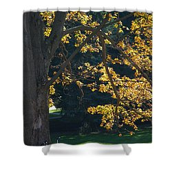 Shower Curtain featuring the photograph September Dreams by Joseph Yarbrough