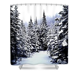 Serenity From Micoua  Shower Curtain