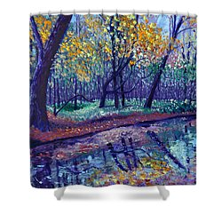 Sewp Creek Shower Curtain by Stan Hamilton