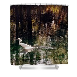 Shower Curtain featuring the photograph Shadowwaters by Lydia Holly