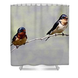 Shower Curtain featuring the photograph Sharing A Branch by Elizabeth Winter