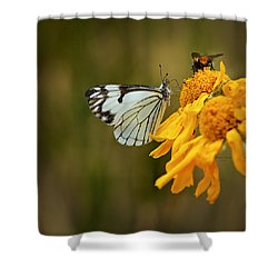 Sharing Shower Curtain by Phyllis Denton