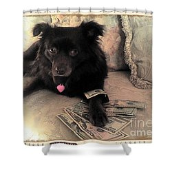 She Is In The Money Shower Curtain by Nina Prommer