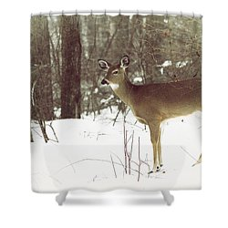 She Sees You Shower Curtain by Karol Livote