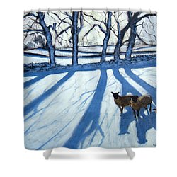 Sheep In Snow Shower Curtain by Andrew Macara