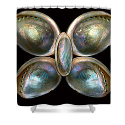 Shell - Conchology - Devine Pearlescence Shower Curtain by Mike Savad