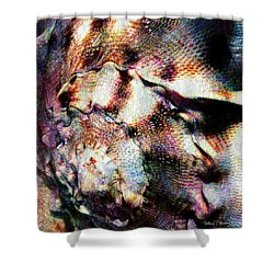 Shell Game Shower Curtain