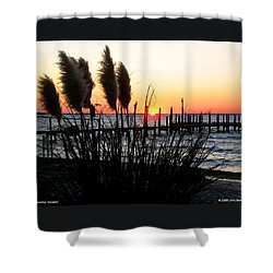 Shoreline Serenity Shower Curtain