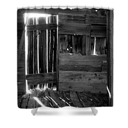 Shower Curtain featuring the photograph Shreds Of Yesterday by Vicki Pelham