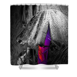 Shrooms 1 Shower Curtain by Stuart Turnbull